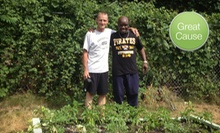 $10 Donation to Help Build Gardens for Veterans