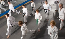 $72 for $130 Worth of Martial-Arts Classes at Battleborn JuJitsu
