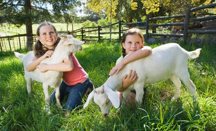 Petting-Farm Visit for One or Two at Green Meadows Farm (Up to Half Off)