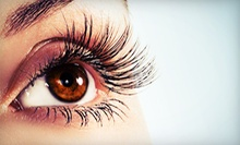 C$27 for One Set of Eyelash Extensions at Au Soleil Salon Spa (C$55 Value)