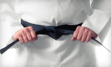 $29 for One Month of Kickboxing or Martial-Arts Classes at Elite Black Belt Academy ($119 Value)