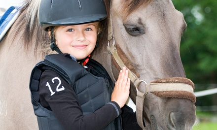 One or Three Private or One Semi-Private Horseback-Riding Lesson at Zephyr's Way Stable (Up to 67% Off)