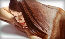 Haircut, Blowout, and Style with Option for All-Over Color or Partial Highlights at Donna Salon (Up to 53% Off)