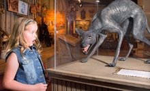 Visit for Two or Four to Buckhorn Museum & Saloon and Texas Ranger Museum (Up to 51% Off)