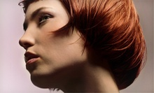 Haircut and Conditioning with Optional Root Touch-Up or Root Touch-Up Package at Artisan Hair &amp; Spa (Up to 85% Off)