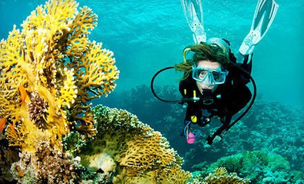 Two-Hour Discover-Scuba Class or One Scuba-Certification Course at Leisure Time Dive &amp; Ski Center (Half Off) 