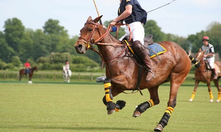$20 for a Weekend Evening Polo Match for Two at Saratoga Polo Association from July 10 to September 6 ($40 Value)