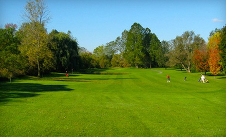 18 Holes of Golf with a Cart Rental and Drinks for Two or Four at Meadowbrook Golf Club (Up to 56% Off)