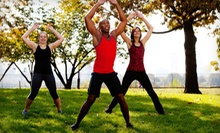 $29 for Five-Week Boot Camp from NowFitness ($75 Value)