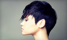 Haircut and Blow-Dry with Full or Partial Highlights at Carla's Salon (54% Off)