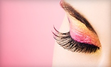 Eyelash and Eyebrow Tint or an Eyelash Perm at The Lash Studio (Up to 53% Off)
