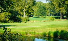 18-Hole Round of Golf with Carts for Two or Four at Bliss Creek Golf Club (Up to 56% Off)