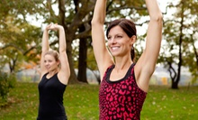 Two, Four, or Six Weeks of Fitness Boot-Camp Classes at Get In Shape Challenge Boot Camp (Up to 89% Off)