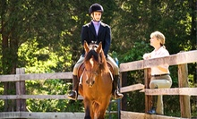 C$79 for Four 60-Minute Horseback-Riding Lessons at Vector Equestrian (C$158.20 Value)