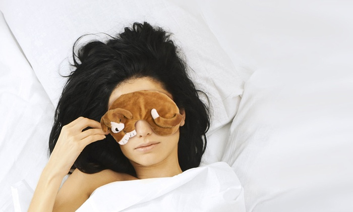 Animal Shaped Eye Pillow : Animal-Shaped Therapeutic Eye Pillows Deal of the Day Groupon