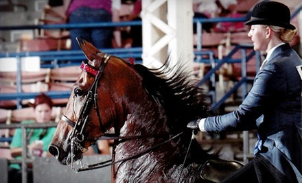 One, Three, or Five 30-Minute Private Horseback-Riding Lessons at Hillcrest Stables, LLC (Up to 57% Off)