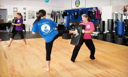 5, 10, or 20 Cardio Kickboxing or Zumba Classes at TeamKat Martial Arts & Wellness (Up to 76% Off)
