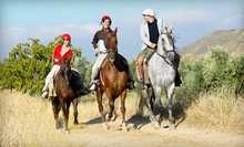 One-Hour Horseback Trail Ride for One or Four at Golden Gait Riding Stables (Up to 51% Off)