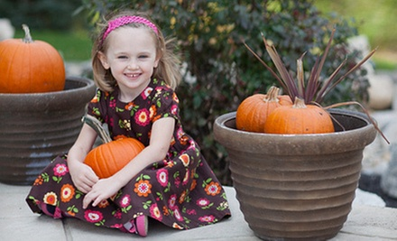 $69 for a One-Hour Family or Children's Portrait Session for Up to Six People at Amitai Sela Photography ($250 Value)