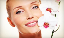 One or Three Anti-Aging Cold-Laser Facials or Microdermabrasion at Sandlewood Spa &amp; Wellness Centre (Up to 64% Off)