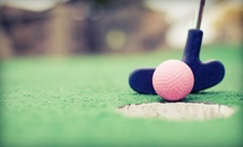 Mini Golf Day Pass for Two or Four at Back to the 50s Mini Golf (Half Off)
