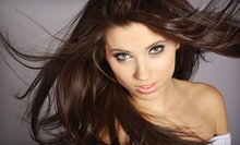 $59 for Haircut, Style, and Eyebrow and Lip Wax with Color or Highlights at Tres Jolie Salon and Spa ($125 Value)