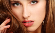 Haircut and Conditioning with Optional Partial or Full Highlights at A Touch Above (Up to 59% Off)