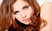 Haircut with Options for Conditioning or Full Highlights at Salon Rochae (Up to 59% Off)