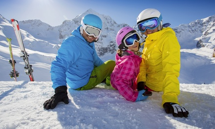 Ski or Snowboard Tune-Up at Ski 'N See/ARCS Ski & Board (Up to 46% Off). Two Options Available.