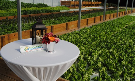 Aquaponic-Farm Tour for 1, 2, 4, or 10 at Sustainable Harvesters (Up to 50% Off)