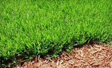 One Hour of Spring Lawn Maintenance or One Hour of Tree and Shrub Trimming from Artefacto Landscapes LLC (Up to 56% Off)