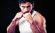6 or 10 Krav Maga and Kickboxing Classes, or One Month of Unlimited Classes at Pinellas Krav Maga (Up to 77% Off)