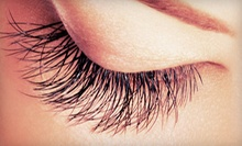 One Full Set of Eyelash Extensions with an Optional Touchup at Divas for Life (Up to 78% Off)