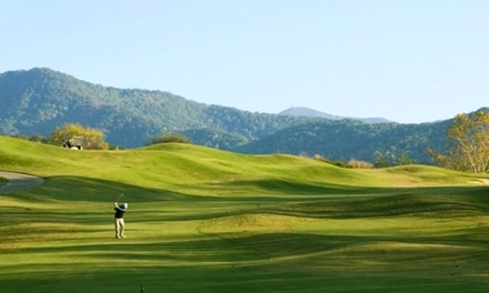 Two or Four 18-Hole Rounds of Golf with Cart Rental at Brasstown Valley Golf Course (Up to 46%Off)