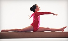 Four or Eight Weeks of Gymnastics Classes at Flips Gymnastics (Up to 64% Off)