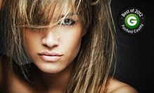 Haircut and Blow-Dry with Deep-Conditioning Treatment or Partial Highlights at Dream Spa & Salon (Up to 53% Off)