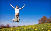$79 for a Food- or Environmental-Allergy Test and Consultation at Allergy Elimination Norwalk ($289 Value)