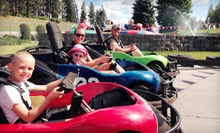 $7 for $14 Worth of Go-Kart Races, Bumper Boats, Laser Tag, Rock Climbing, and Mini Golf at Wonderland Family Fun Center