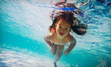 $39 for Four Weekly Full-Service Pool Cleanings from Startex Pools ($125 Value)