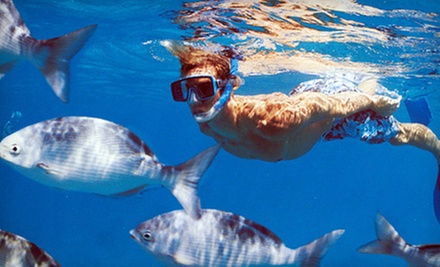 Snorkel Excursion for Two or Snuba Tour for Two from Destin Snorkel (Half Off)