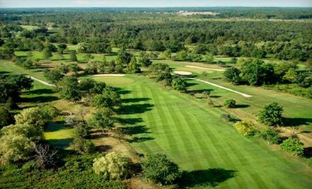 $69 for an 18-Hole Round of Golf for Two with Cart Rental and Range Balls at Willodell Golf Club of Niagara ($140 Value)
