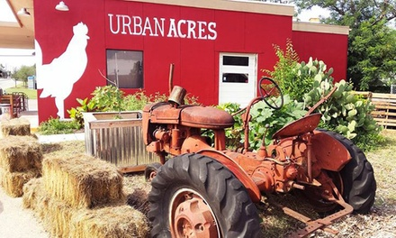 $12 for $20 Worth of Groceries, Merchandise, and Farm-to-Table Cuisine at Urban Acres