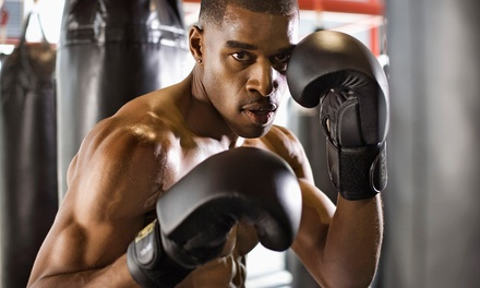 2 or 4 Personal Boxing Sessions or 10 Conditioning Classes at Keppner Boxing (Up to 76% Off)
