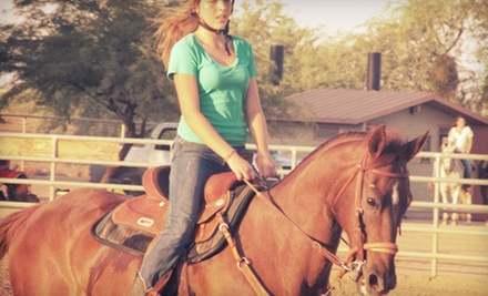 One or Two 60-Minute Group Horseback-Riding Lessons at S.T.A.R.S. of Horsemanship (Up to 59% Off)