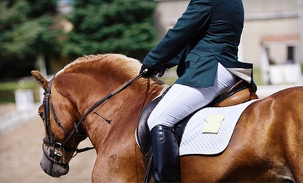 Three or Five Private Horseback-Riding Lessons at Edinger Farm (Up to 55% Off)