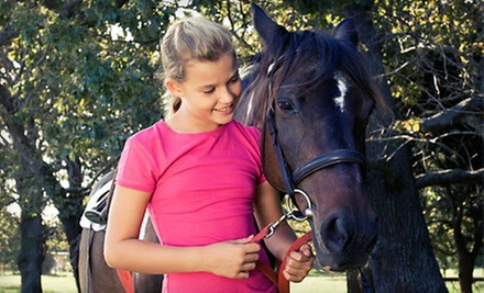 One, Three, or Five 60-Minute Horseback-Riding Lessons at Copper Leaf Stable (Up to 54% Off)
