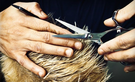 Cuts and Hair Extensions at Big Al's Unisex Hair Salon (Up to 60% Off). Four Options Available.