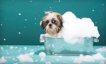 $15 for Dog Spa Bath Package with Bath, Ear Cleaning, and Nail Trim at Happy Tails Pet Spa &amp; Resort (Up to $35 Value)
