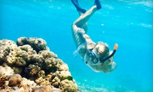 Guided Snorkeling Tour for One or Two from Hawaiian Diving Adventures, LLC (Up to 58% Off)
