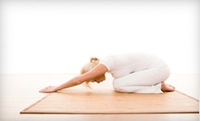 5, 10, or 15 Classes at The American Yoga Academy &amp; Studio (Up to 69% Off)